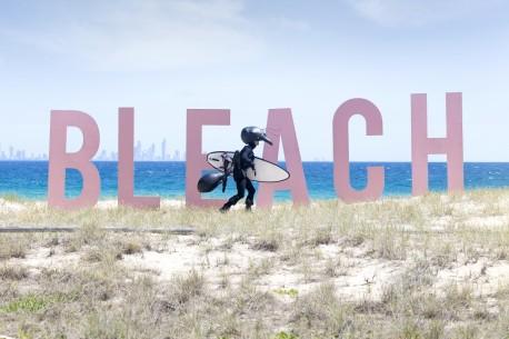BLEACH_Ant-with-surf-board-e1419712121381-1050x700